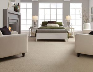 Carpet Cleaning Nampa