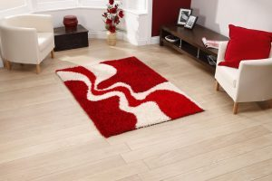 Rug Cleaning Boise