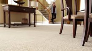 carpet 911 carpet cleaning boise